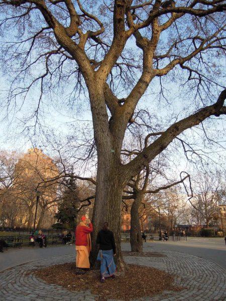 NYC 2012 (1)