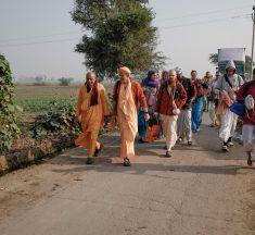 Vrindavan Braj Parikrama – Day 7